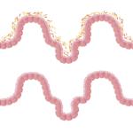 image-microbiote-150x150-9483583