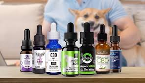 Essential Cbd Extract For Pets – action -dangereux – Amazon