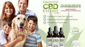 Essential Cbd Extract For Pets – protection corporelle - composition - site officiel – avis