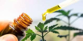 Organic line cbd oil - où trouver - commander - France - site officiel